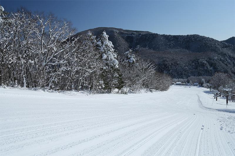 16121803_jiigatake