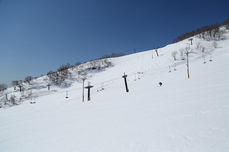 17033003_hakunori