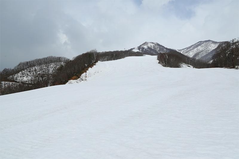 17041504_tsugaike