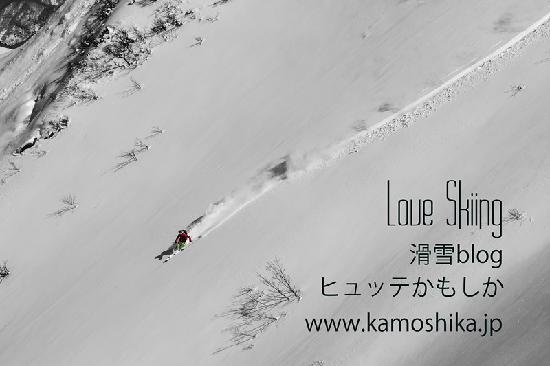 190115_kamoshika