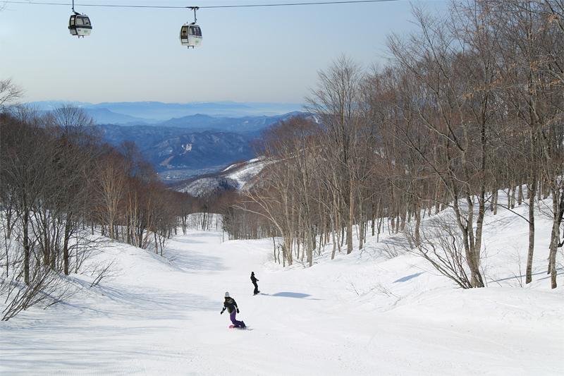20032602_tsugaike
