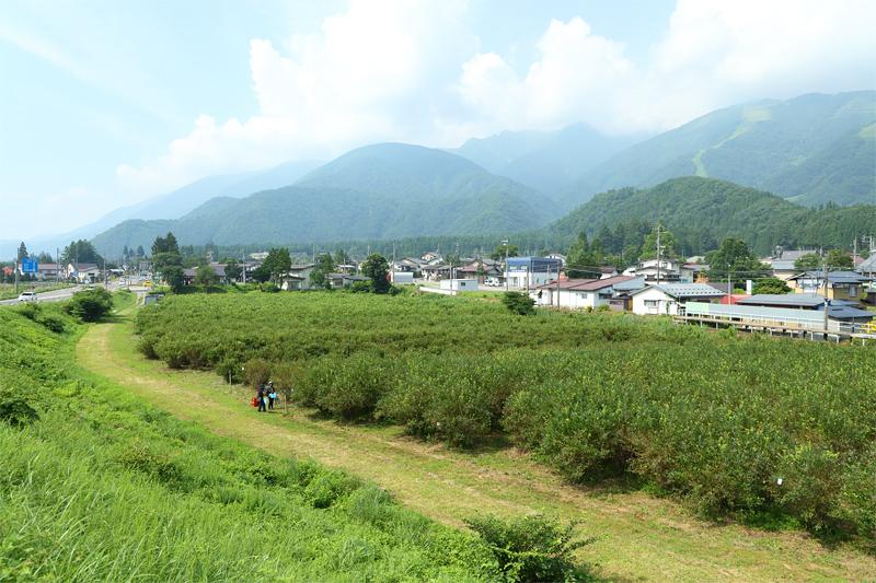 20080501_kanko