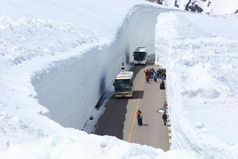 立山黒部アルペンルート_雪の大谷