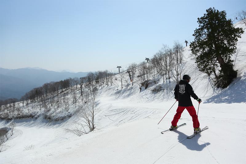 Hakuba Happo One, Panorama Course