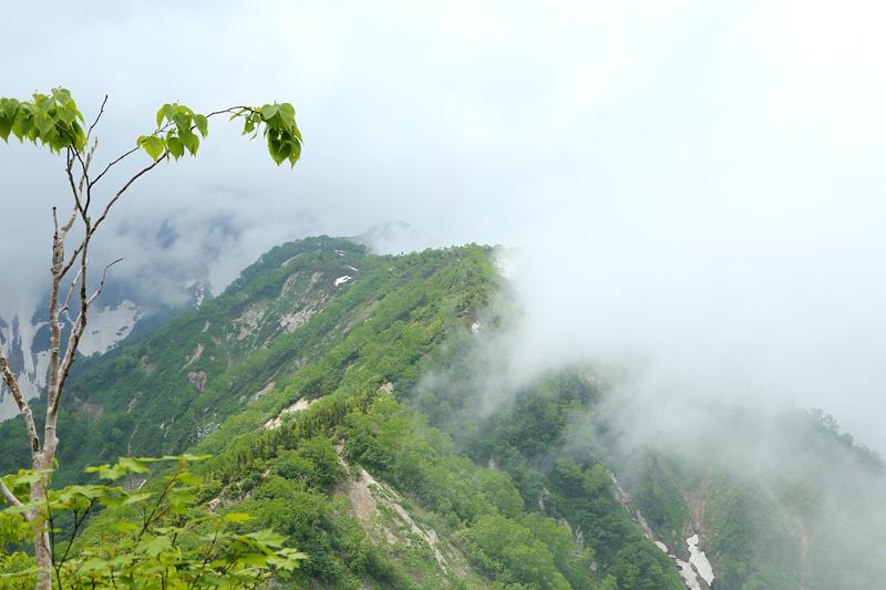 小遠見山トレッキングコース