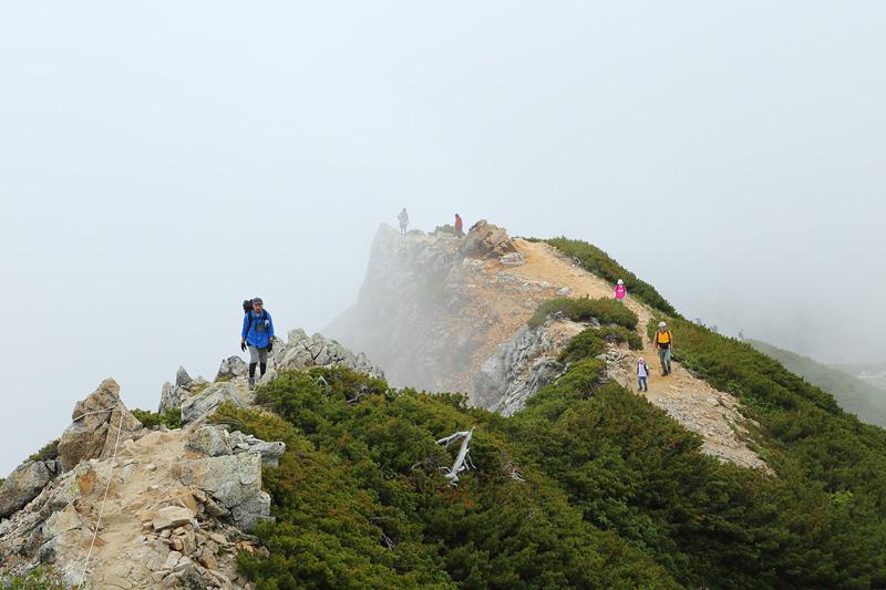 唐松岳への登山道_丸山ケルン~唐松岳頂上山荘