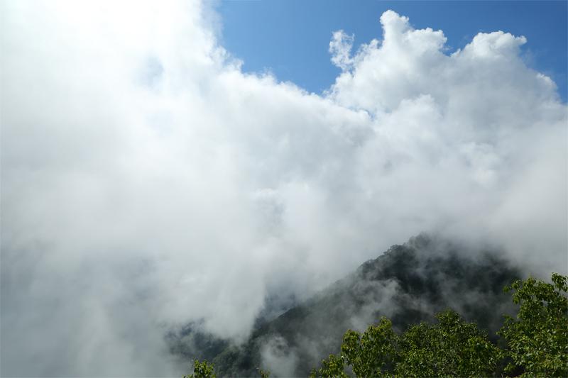小遠見山トレッキングコース_二ノ背髪~小遠見山