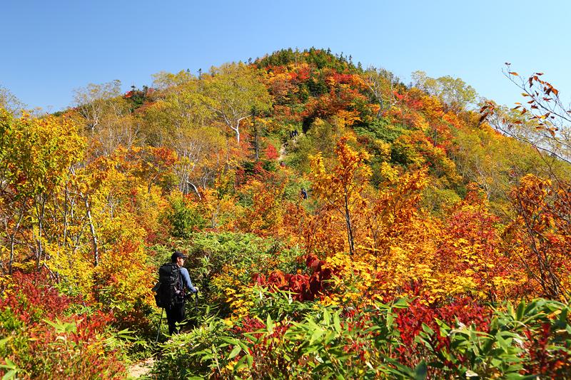 五竜岳への登山道_小遠見山~中遠見山