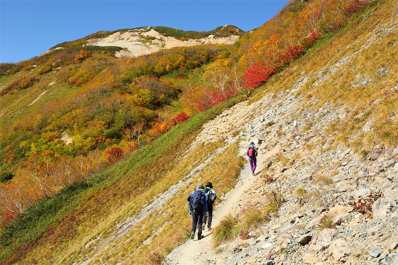 唐松岳への登山道_下の樺~上の樺
